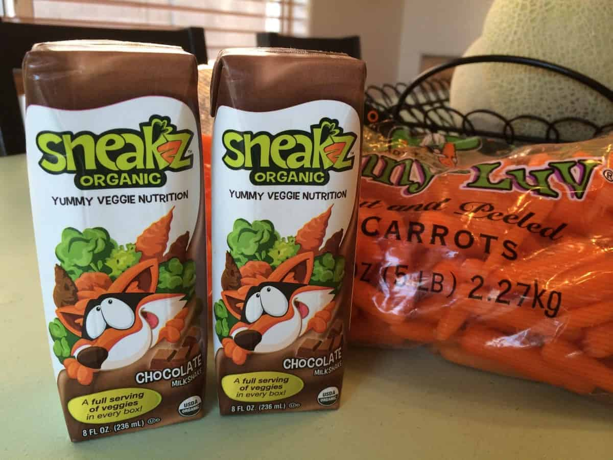 Sneakz Chocolate Drink Gluten-Free Feature and Giveaway