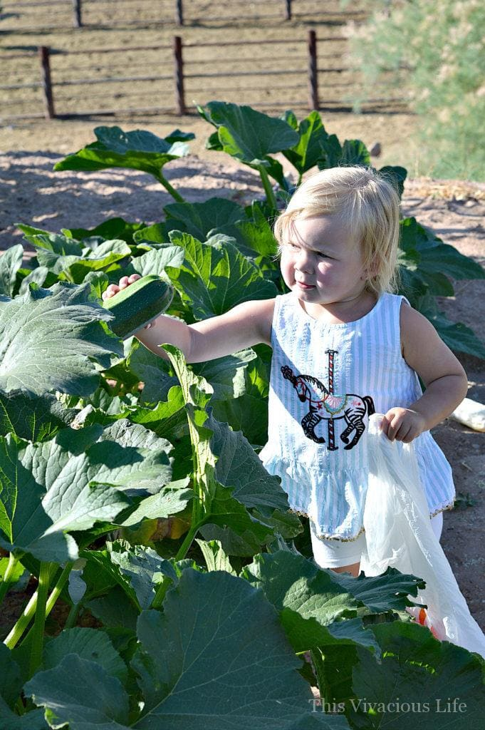 Gardening with kids can be fun and educational. The best part is that you don't have to be a gardener to have your kiddos learn to garden. | tips for gardening with kids | teaching your kids to garden | gardening tips for kids | how to garden with kids | teach kids to garden || This Vivacious Life
