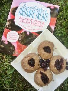 Sweet Debbie's Organic Treats Cookbook Review & Giveaway