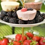 "Easy frozen yogurt ""muffins"" that are gluten-free and make breakfast a breeze! They are also great for your next pilates party. www.glutenfreefrenzy.com"