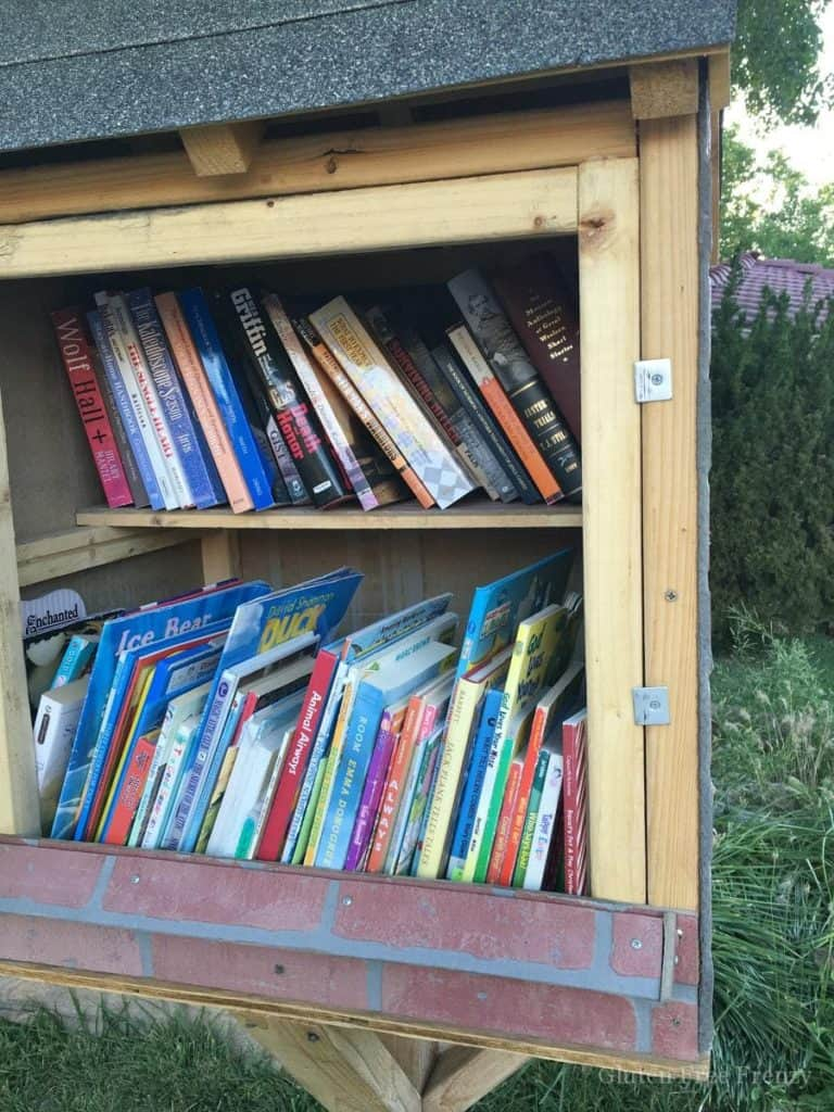 This DIY little library is so cute and totally promotes childhood literacy in neighborhoods. Get measurements and more on how to build your own little lending library.    This Vivacious Life #lendinglibrary #literary #reading #summerfun