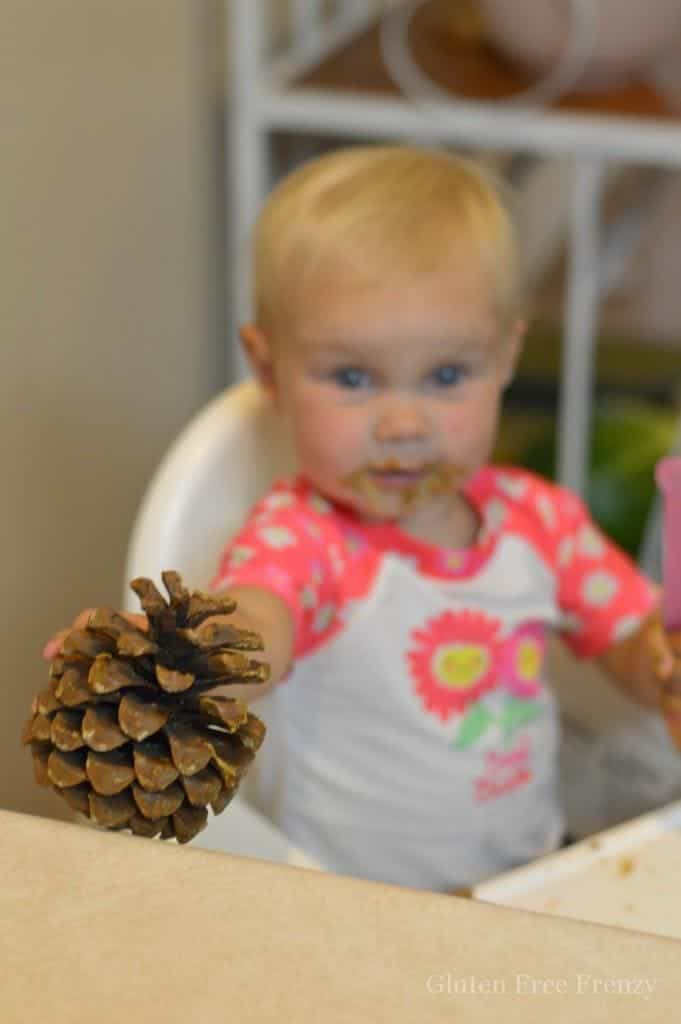 These bird feeder pinecones are so easy to make and the kids will love that they can even lick their fingers in between decorating. These are made nut-free with Sunbutter and seeds but you can use whatever nut or seed butter you'd like. | allergen friendly kids crafts | allergen free kids crafts | DIY pinecone bird feeder craft | how to make a pinecone bird feeder | summer craft ideas for kids | activities for allergen sensitive kids || This Vivacious Life