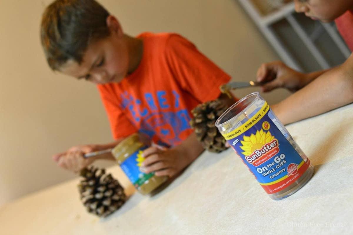 Pinecone bird feeders (nut-free)