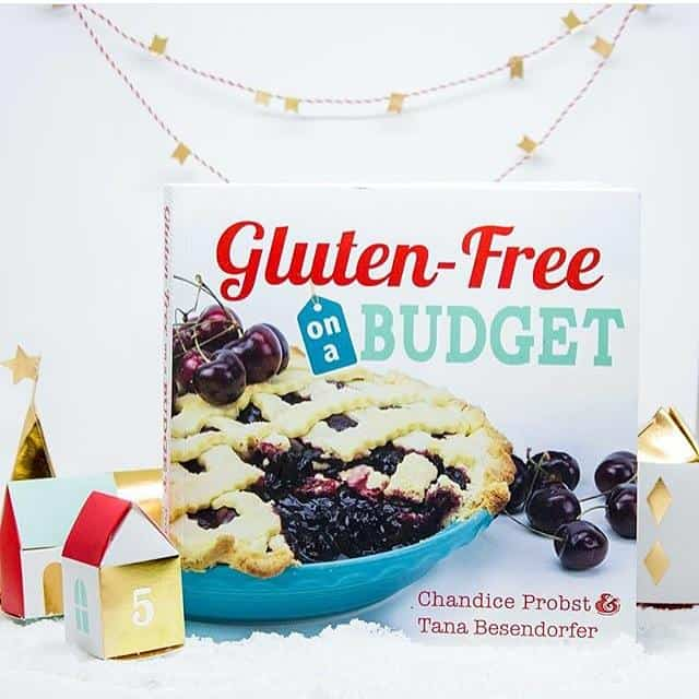 Gluten-Free on a Budget cookbook