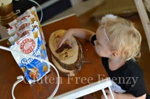 Three Bakers Snackers Gluten-Free Crackers & Easy Snack Ideas