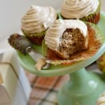 These gluten-free apple cider cupcakes are moist and full of fall flavors. Warm cinnamon and apple come together in a great dessert that's perfect for Thanksgiving. www.glutenfreefrenzy.com