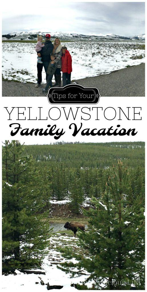 Here are tips for planning your own Yellowstone family vacation. We had a great time and want to share what did and didn't work for us to make your trip easier. | Yellowstone National Park vacation tips | travel tips for Yellowstone National Park | traveling to Yellowstone | tips for traveling with kids to Yellowstone National Park | family vacation tips | planning for a vacation to Yellowstone National Park || This Vivacious Life #summertravel #familytravel #traveltips #yellowstone #yellowstonetravel #nationalparks