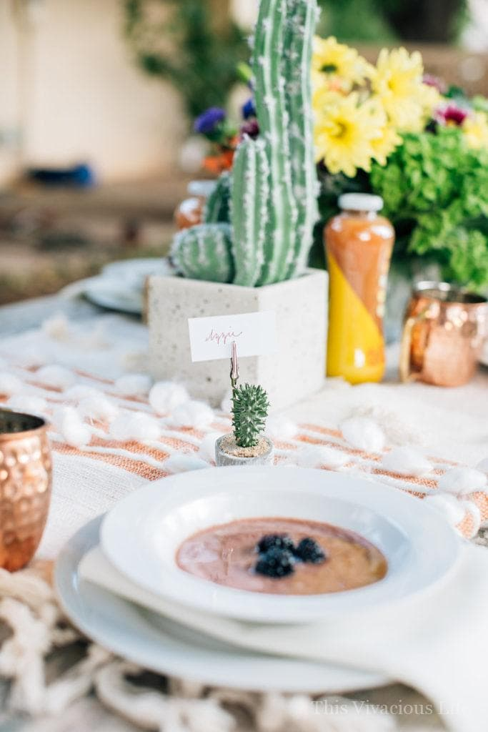 Desert Succulent Dinner Party and Blackberry Gazpacho | how to host an outdoor dinner party | hosting a dinner party tips | tips for hosting a dinner party | using succulents in a tablescape | outdoor dinner party ideas | summer dinner party ideas | hosting an outdoor party | blackberry gazpacho recipe | how to make blackberry gazpacho | homemade blackberry gazpacho || This Vivacious Life