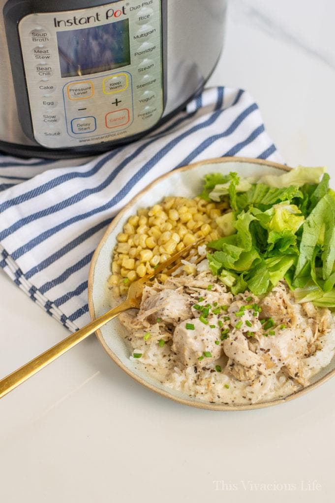 Chicken, rice, corn and salad on a plate by an Instant Pot
