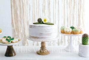 Cactus Succulent Baby Shower + Cucumber Lime Mocktail with Watermelon Ice