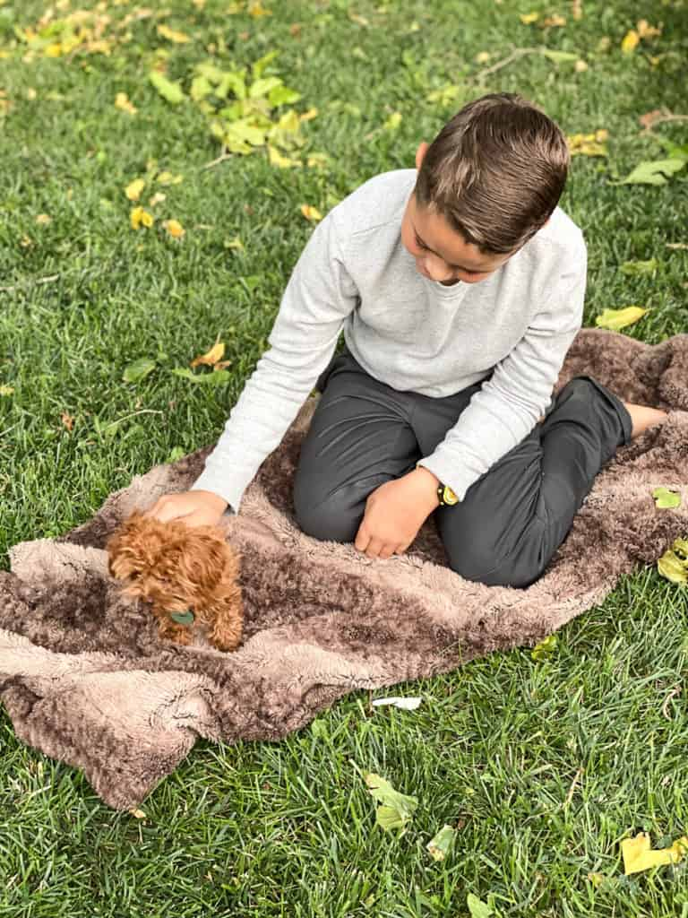 Boy on the grass with puppy on fur blanket