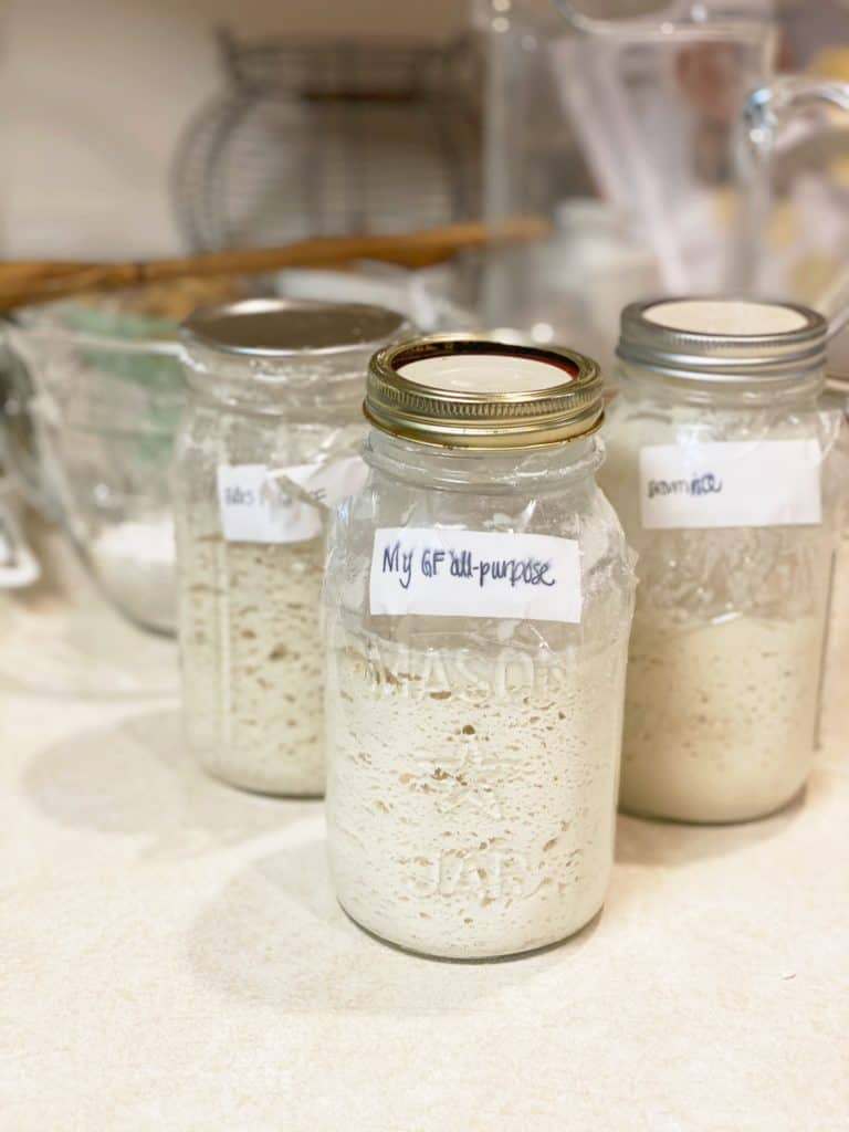 gluten-free sourdough starters in jars