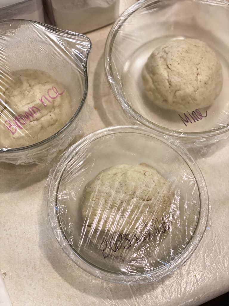 gluten-free sourdough in bowls with Saran Wrap
